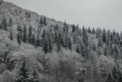 De ce nu ne place iarna...?