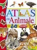 Atlas cu animale - carte cu autocolante