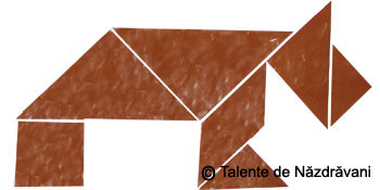 Catel, colaj geometric
