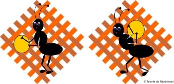 Tablou de primavara cu furnici