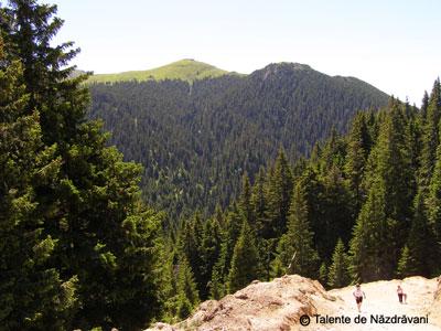 Muntele Rosu, Ciucas