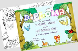 diploma1iunie2011