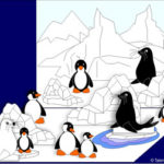 Viata la pol: printre pinguini si foci (colaj)