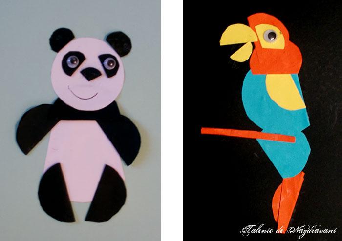 cerculete_panda_papagal