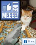 Copiii si Facebook-ul