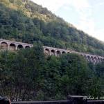 Valea Jiului și umbra unui erou din trecut: Ecaterina Teodoroiu