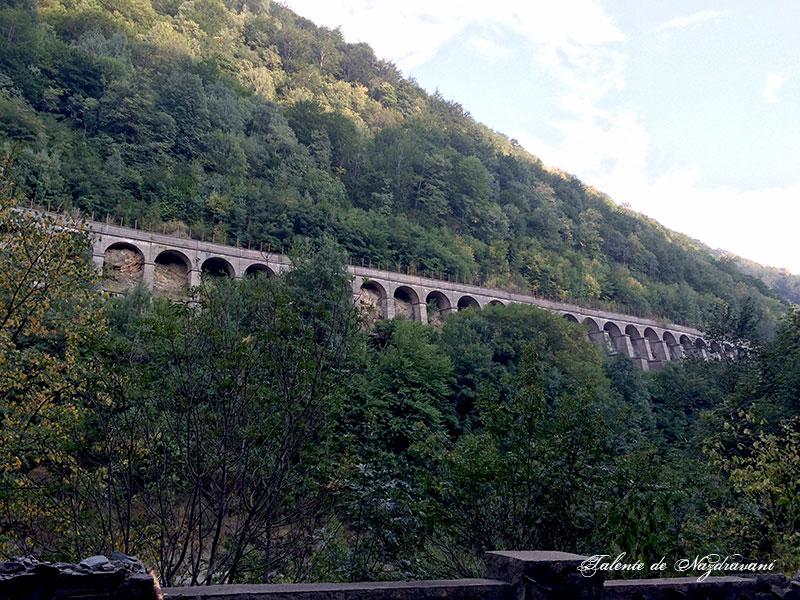 viaduct Jiu