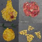 Fructe de toamnă din frunze pe asfalt