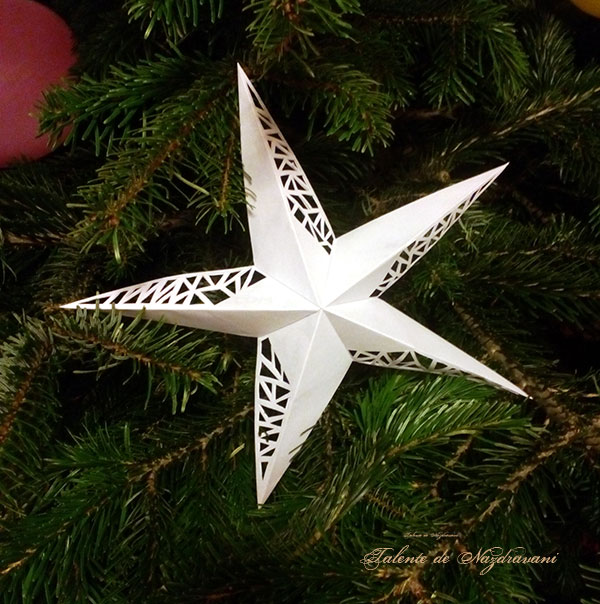 steluta origami