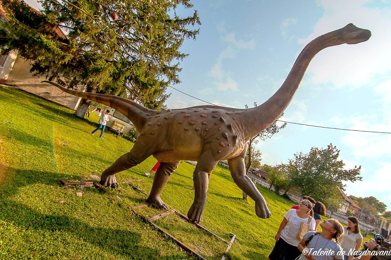 Geoparc Hateg - Macheta Magyarosaurus dacus - Centrul de Știință și Artă din comuna General Berthelot