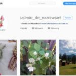 instagram_talente_de_nazdravani