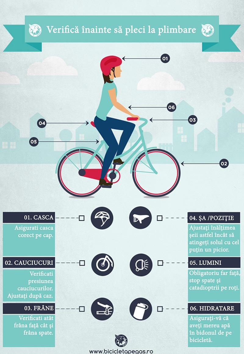 Bicicleta Pegas checklist-copii