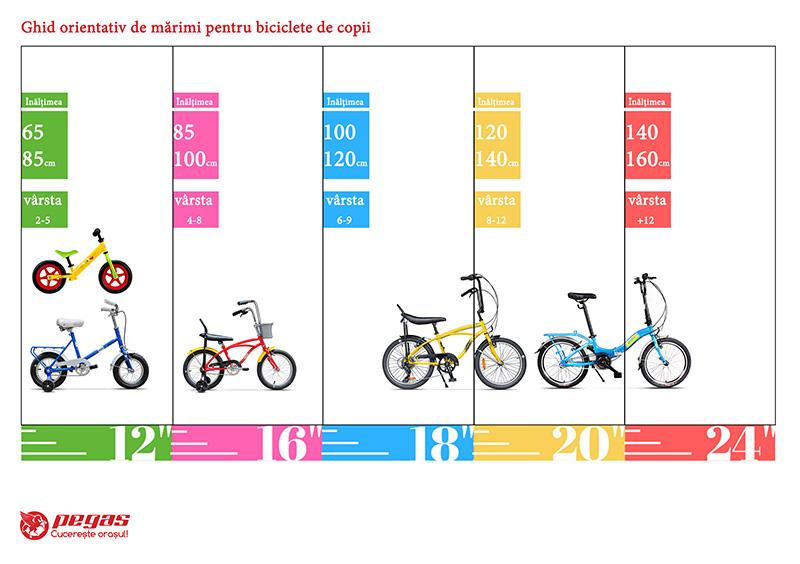 Bicicleta Pegas ghid marimi
