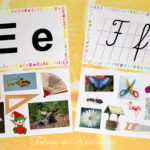 Planșe cu literele de tipar și de mână