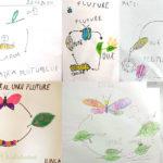 ciclul de viata al unui fluture