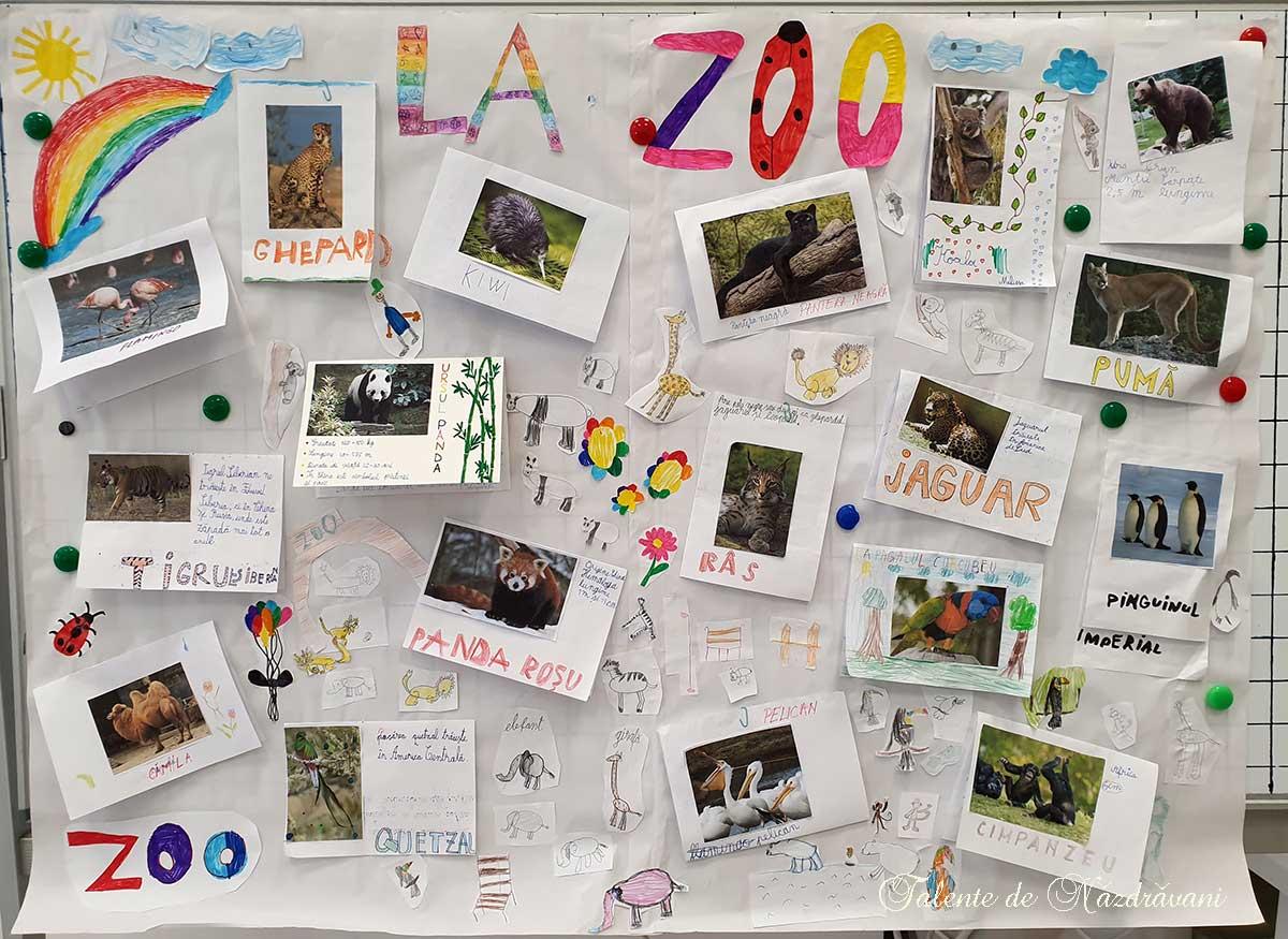 La ZOO - proiect clasa întâi