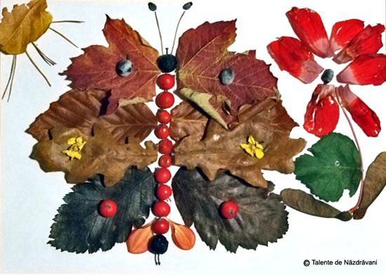 Silvia, colaj din frunze şi flori de toamna