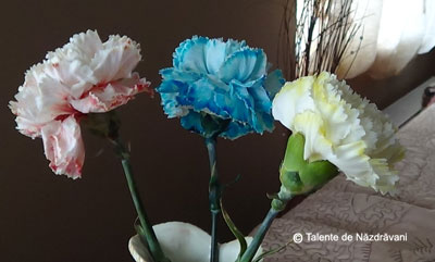 Experiment cu flori